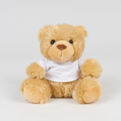Small Brown Bear In A T-Shirt